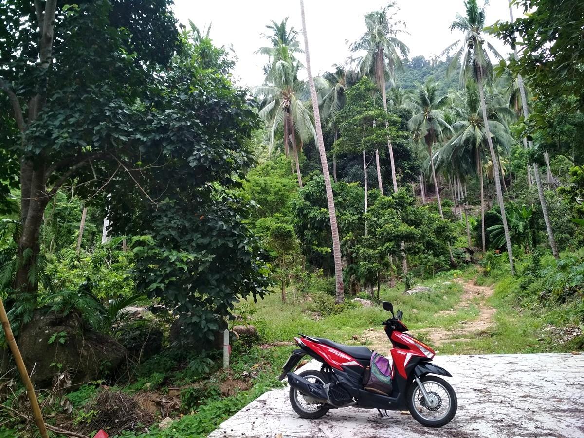 moto tailandia