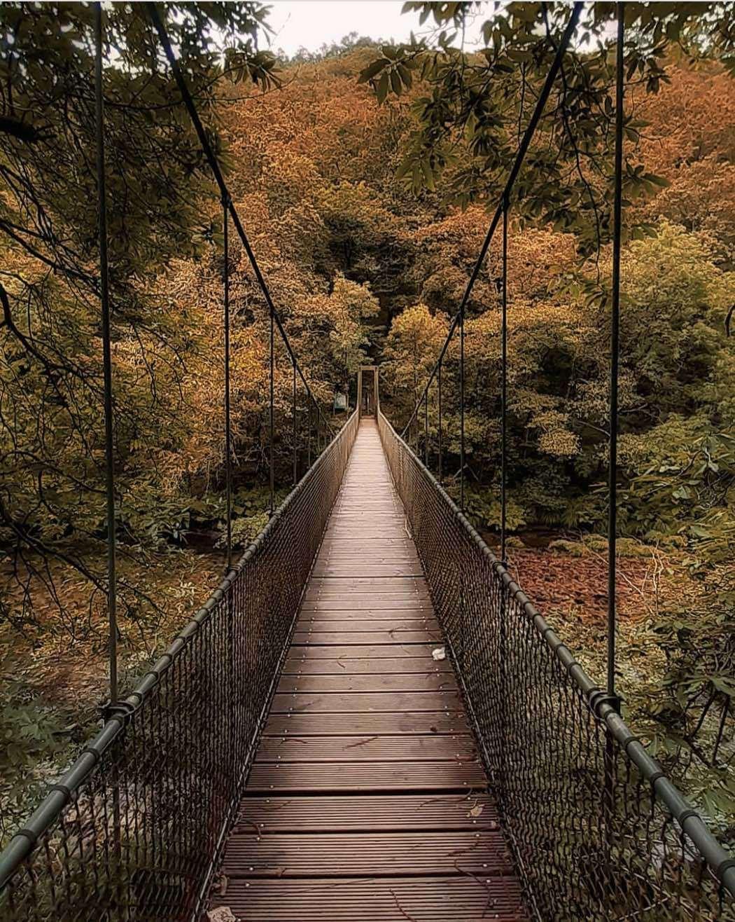 Parque Natural de Fragas del Eume