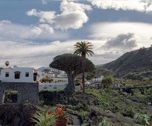 Icos de los Vinos, Tenerife
