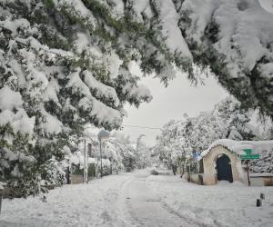 Calle con nieve Filomena Madrid