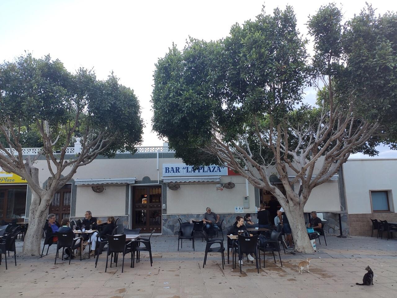 mejores restaurantes donde comer en Cabo de Gata