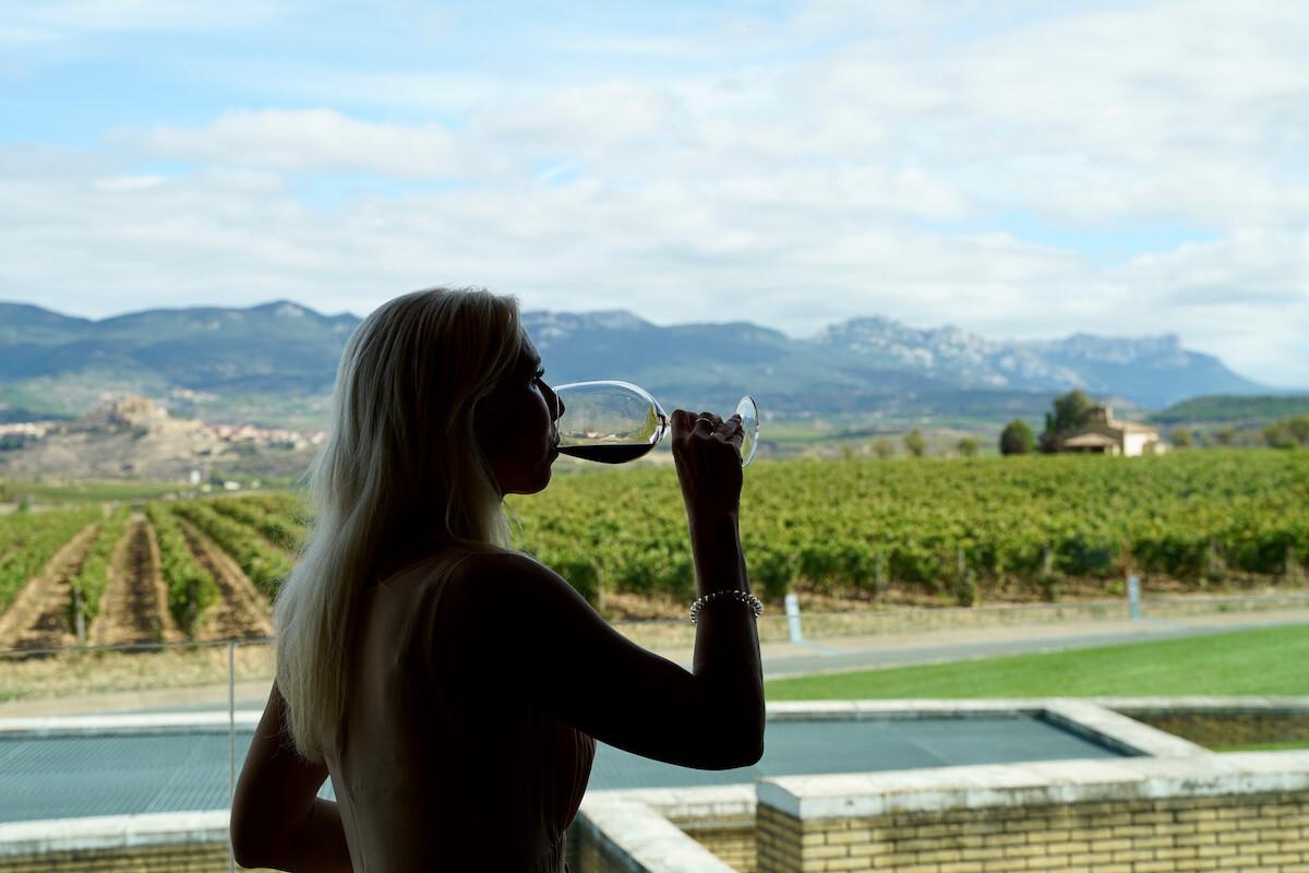 Cata con vistas a viñedos en Bodegas Vivanco en Briones, La Rioja