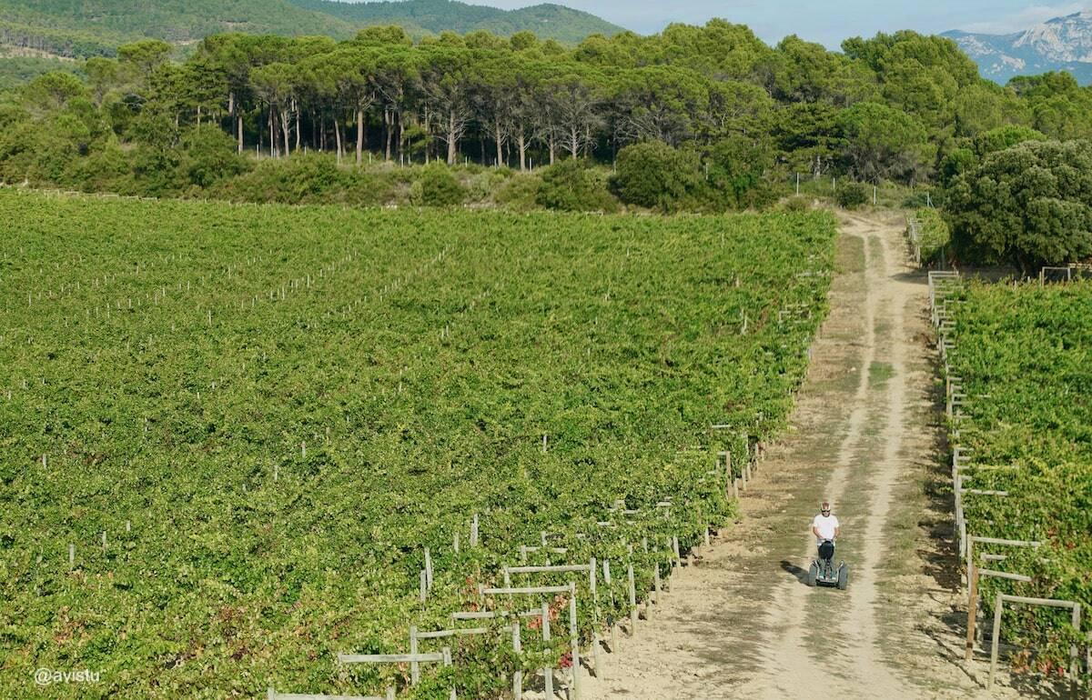 En Segway por los viñedos de La Rioja
