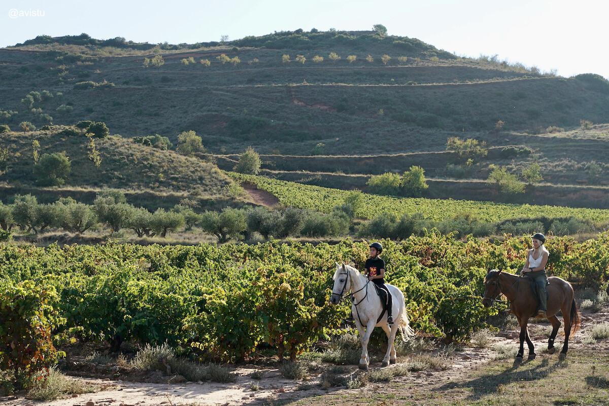 Enoturismo en forma de paseo a caballo por La Rioja